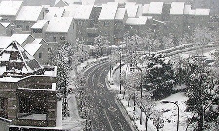 305-Snowstreet