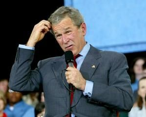 Bush Stupid 1